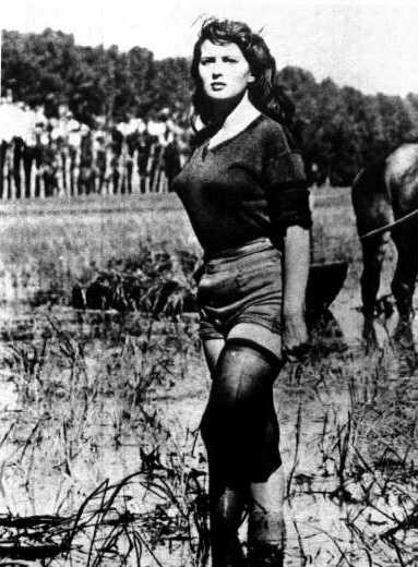 "Silvana Mangano in ""Bitter Rice"""