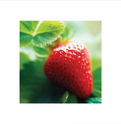 lgppr45076strawberry-fresh-berry-fruit-art-print.jpg