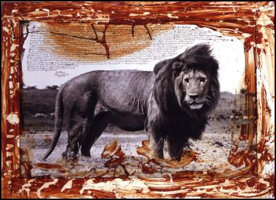 "(Credt: Peter Beard ""Serengeti Lion"")"